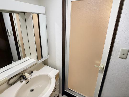 大きな洗面ボウル、充実した鏡面裏収納のついた洗面台のある洗面室です