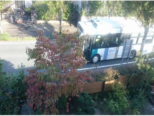 前面道路にはバスが通るのでバスでの移動が便利です。バス停まで110mの便利さです。