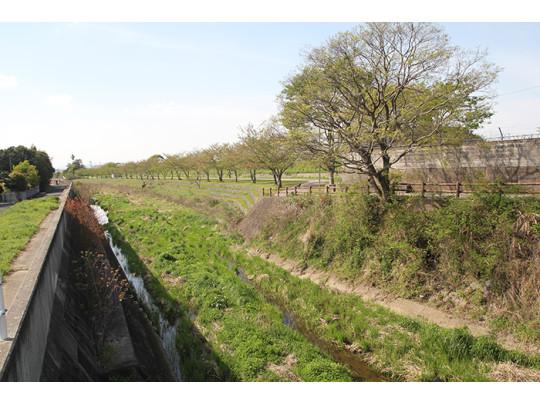 近所を流れる近津川。ジョギングや散歩に最適です。