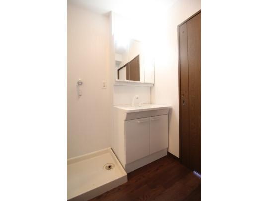 3面鏡の裏にも収納棚があるので、歯みがきセットや化粧品もきれいに整頓できます。